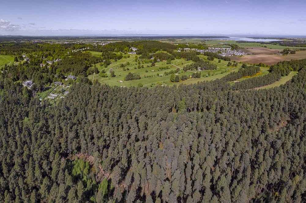Looking over Muiry Woods towards Forres Golf Course and Findhorn Bay
